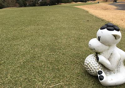 golf_camel2