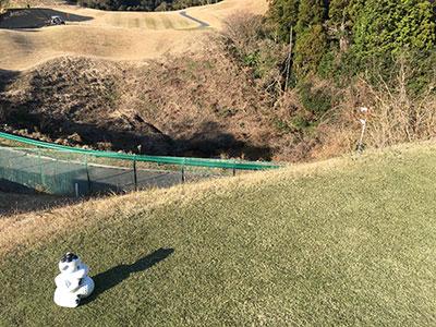golf_camel3